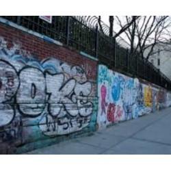 Anti Graffiti (0)